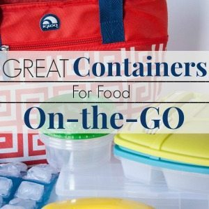 Great Containers for Food On The Go feature