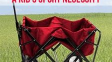 Folding Wagon A Kid's Sport Necessity