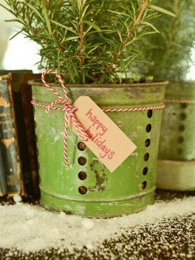 original_Marian-Parsons-Christmas-gift-wrap-vintage-potted-plant-vert_3x4_lg